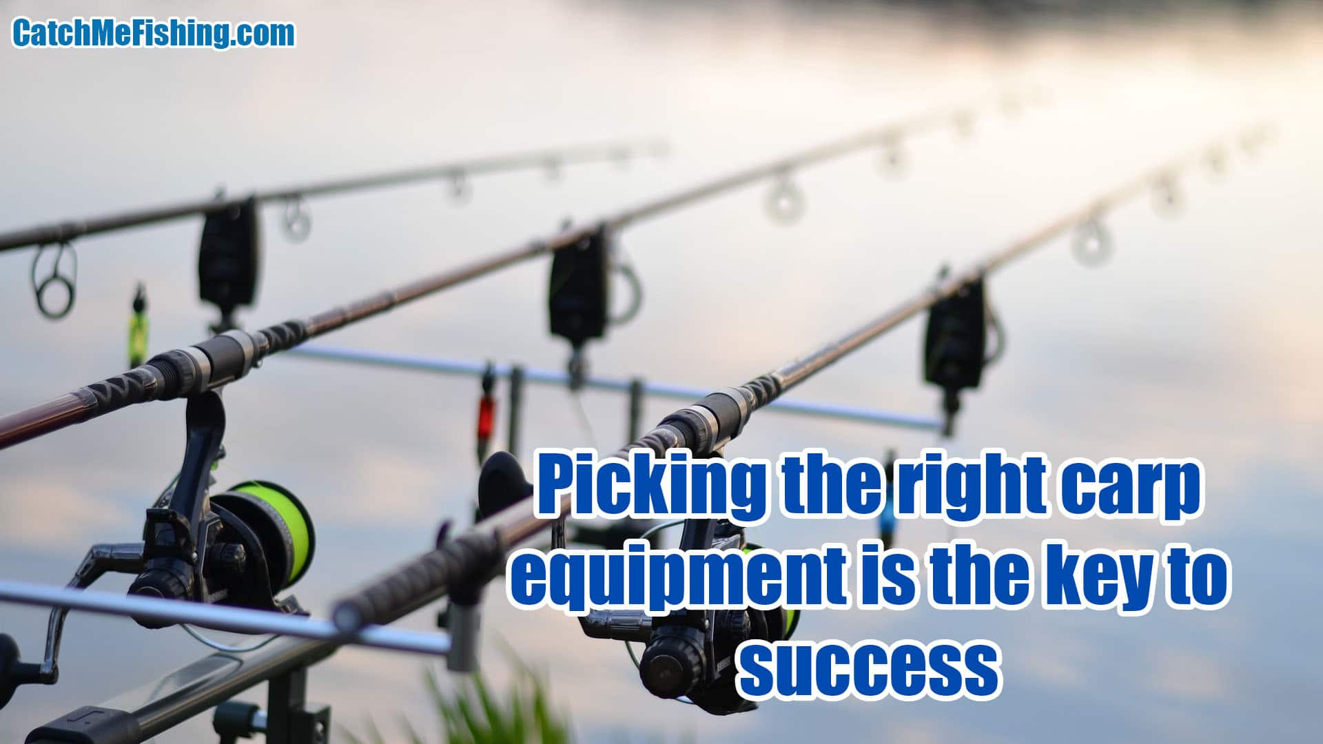 Best tackle for carp beginners