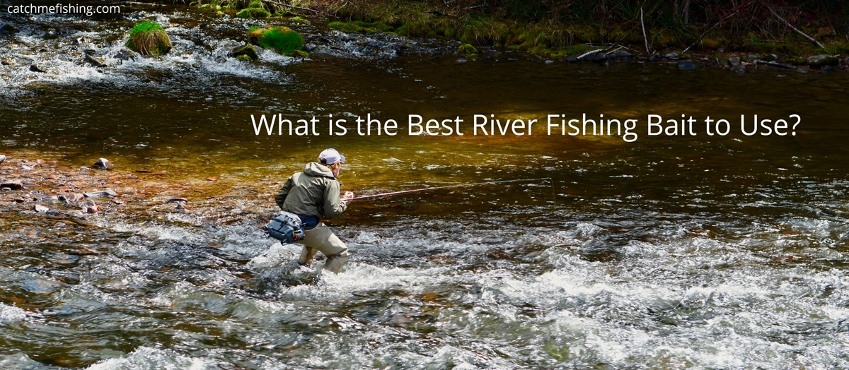 What is the best river fishing bait to use