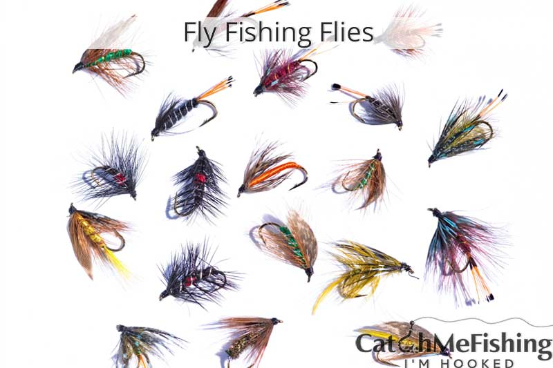 Fly fishing flies for beginners
