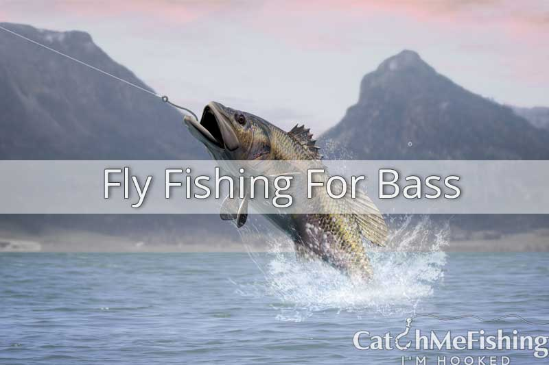 Fly fishing for bass, a guide on how to catch bass with fly fishing