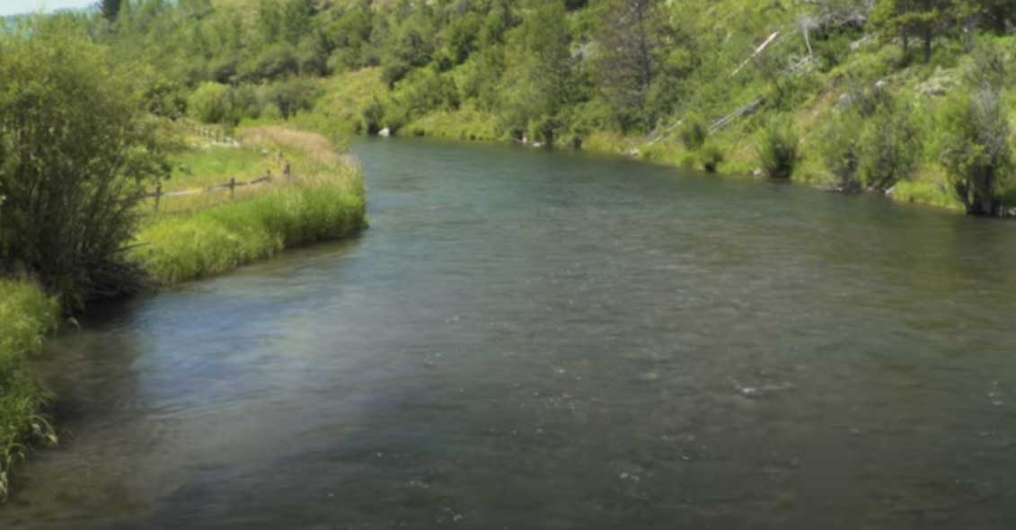 river fishing bubble line