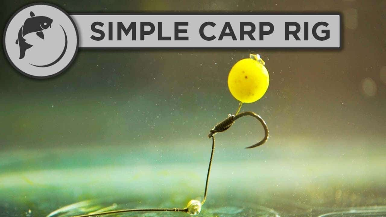 How to tie a simple carp rig