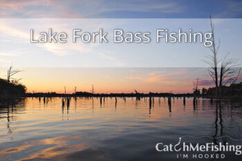 Lake Fork Bass Fishing