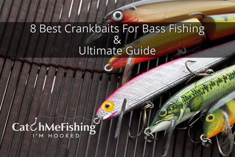 8 Best Crankbaits For Bass Fishing - Ultimate Guide & Review