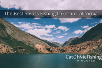 Best-Bass-Fishing-in-California-5-Amazing-Lakes