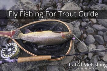 Fly Fishing for Trout Guide