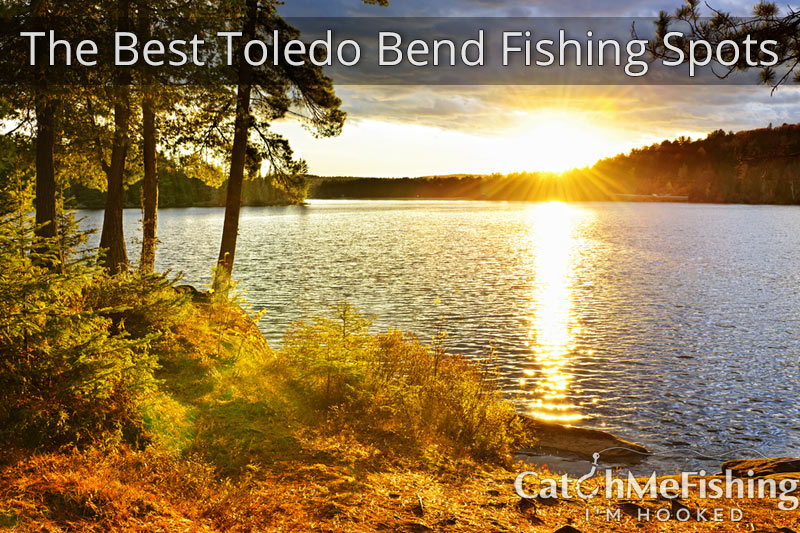 The Best Toledo Bend Fishing Spots