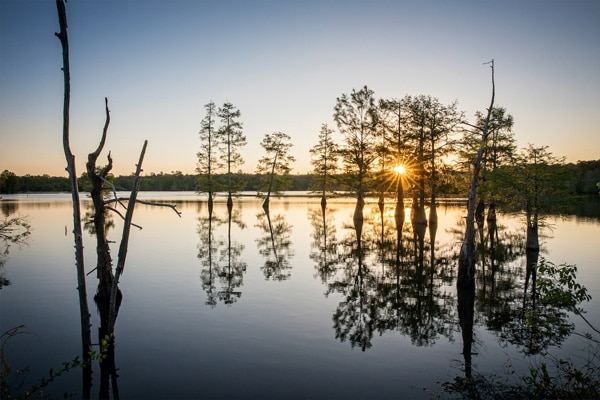 Toledo Bend best bass fishing lakes in Texas