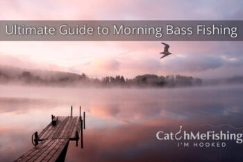 Ultimate Guide to Morning Bass Fishing