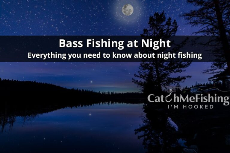 Bass Fishing at Night Guide Learn How to Catch Bass at Night