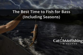 The Best Time to Fish for Bass Including Seasons