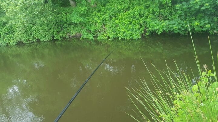 Fishing on pole at foxhouses fishery